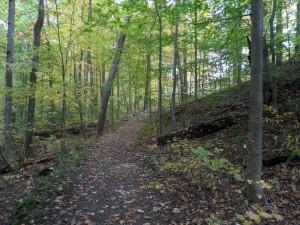 Autumn Foliage in Brecksville Reservation, Cleveland, Ohio Metroparks October 2012